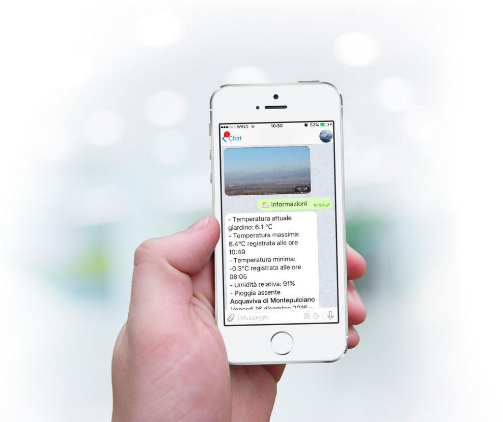Channel +bot telegram and messenger – Osservatorio ad Statuas